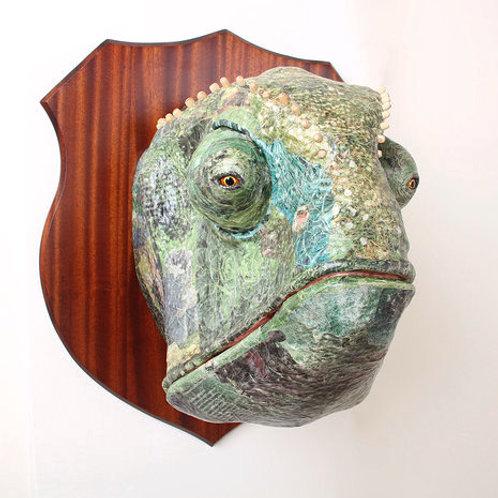 Chameleon - David Farrer