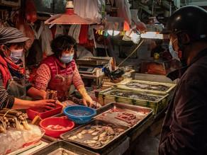 Gobierno de Wuhan prohíbe venta y consumo de animales salvajes