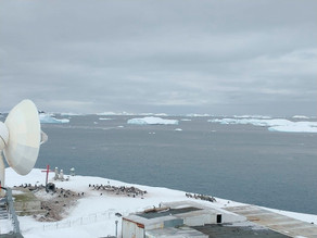 El coronavirus llega a la Antártida con un brote en una base militar de Chile