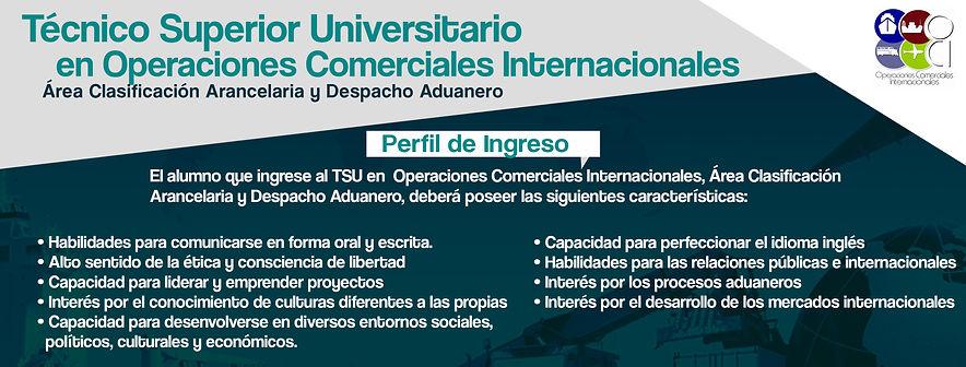 Perfil de Ingreso OCI.jpg