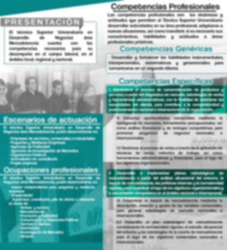 DN Web p2.jpg