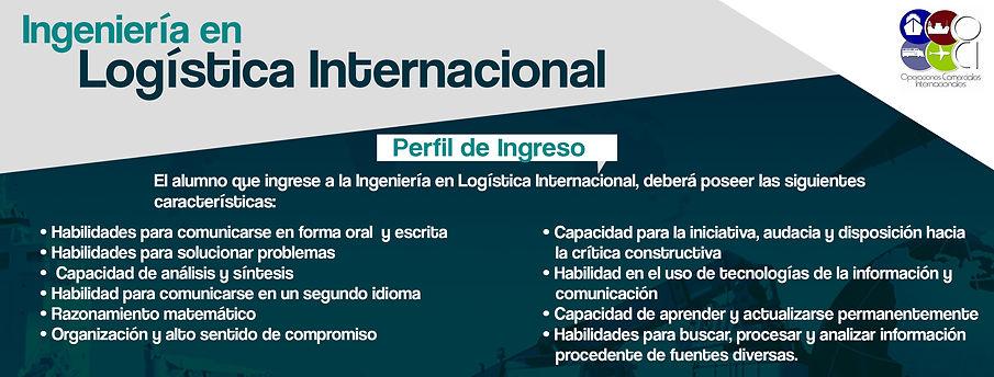 Perfil de Ingreso ILI.jpg