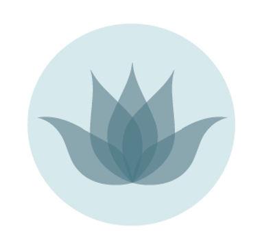 DMA_logo_buttonB.jpg