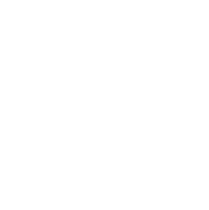 Logo 1001 Projects wit.png