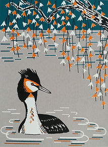 Great Crested Grebe print