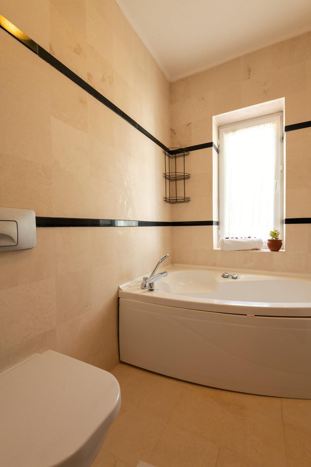 V838 bathroom