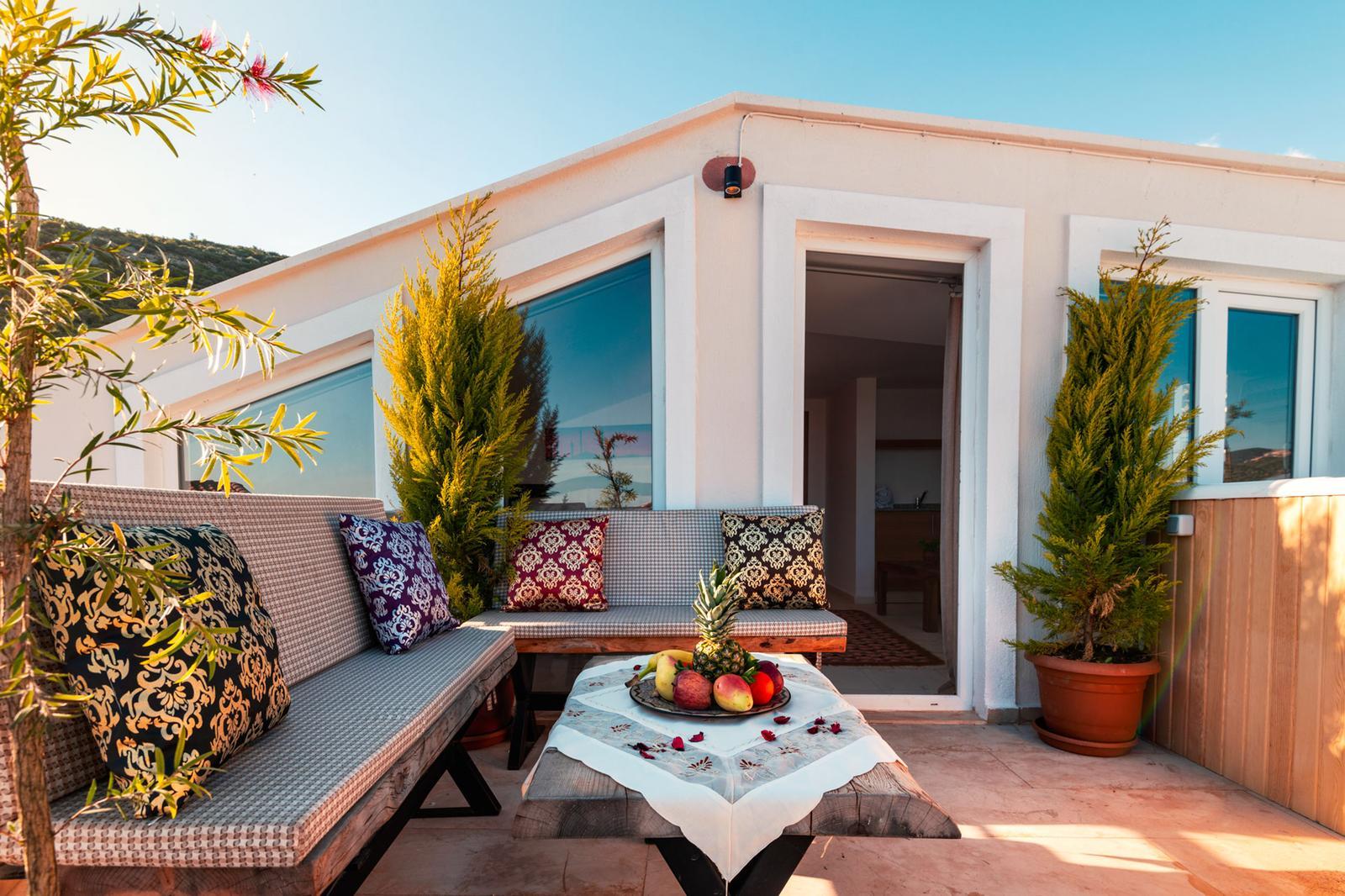 V838 roof terrace