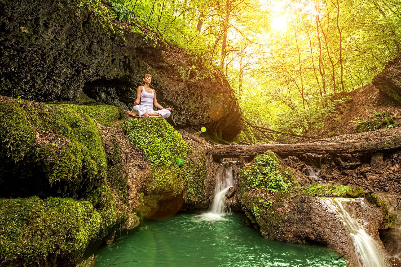 Wilderness Wellbeing (Full Day)
