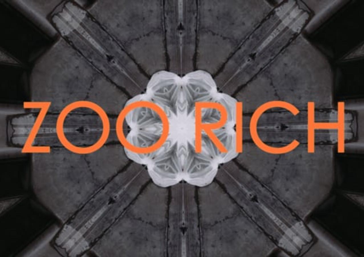 'Zoorich' by Diane Gemsch