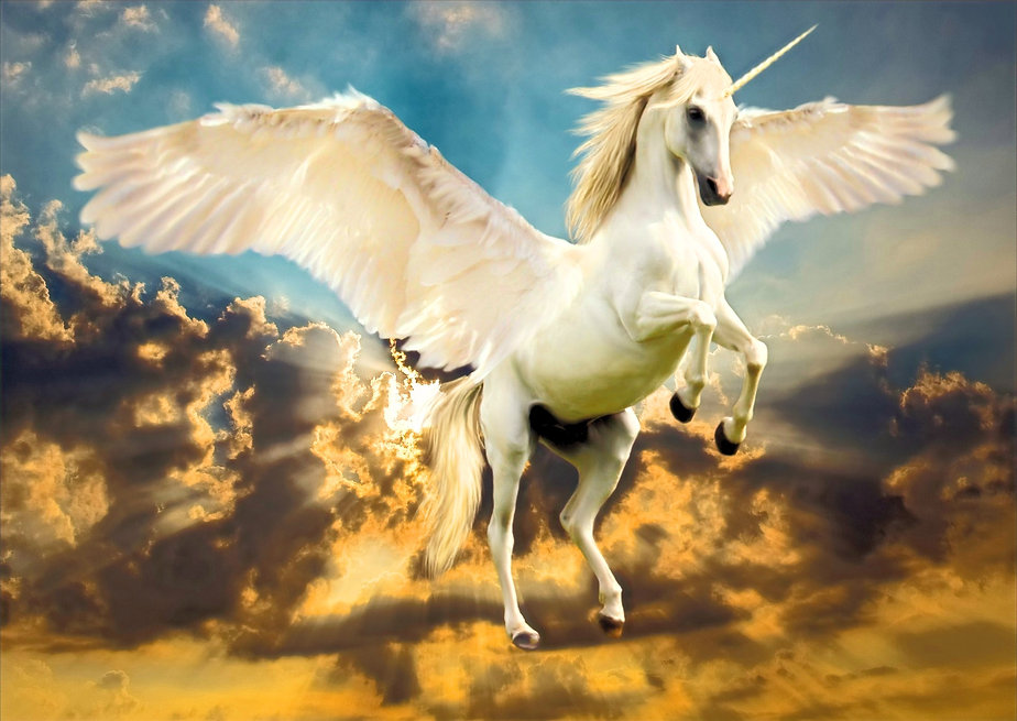 unicorn_goldrad_luxuryfashion_special.jp
