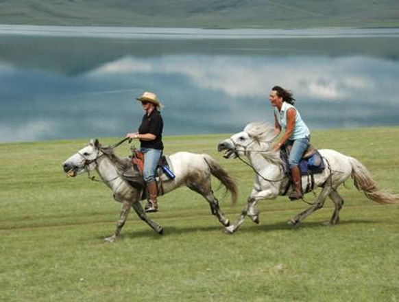 horseback white pax.2 womens.jpeg
