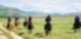 果てしがない大草原で馬に乗って駆け足体験!!