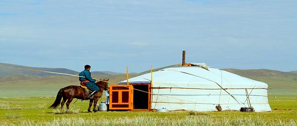 遊牧民の家に滞在しながら乗馬体験