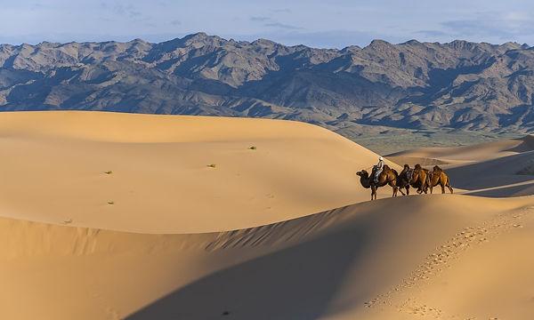 南ゴビのホンゴル砂丘
