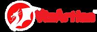Vizartian_Horizental_institute-logo_v02.