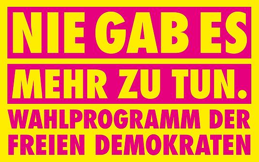 Banner_Wahlprogramm_klein.png