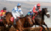 Three jockeys competing in a horse race.