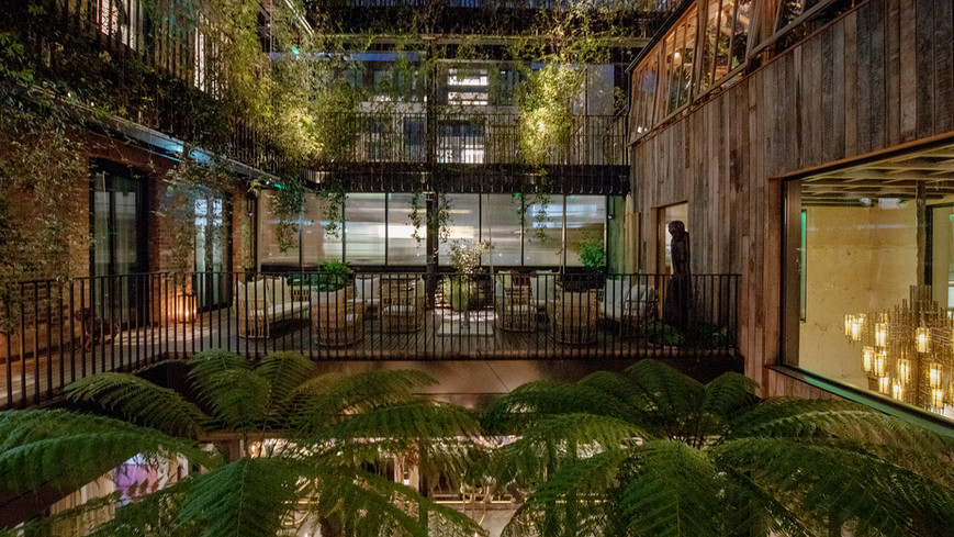 AH Mandrake Terrace 18 copy - lo.jpg