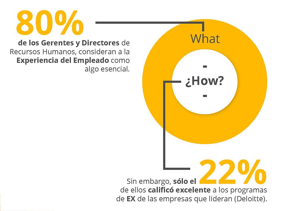 80% de los Gerentes y Directores de RH consideran la EX como algo esencial. 22% de ellos calificó excelente a los programas de EX de las empresas que lideran.