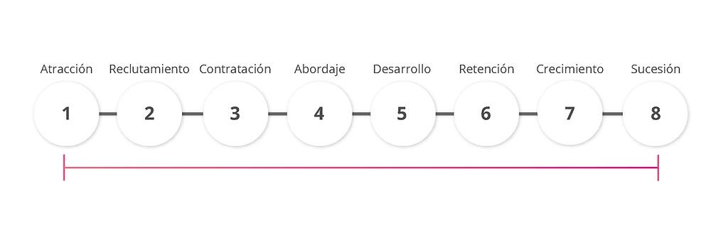 Employee Journey Integral: Atracción, Reclutamiento, Contratación, Abordaje, Desarrollo, Retención, Crecimiento y Sucesión.