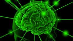 Brain+Enhancement