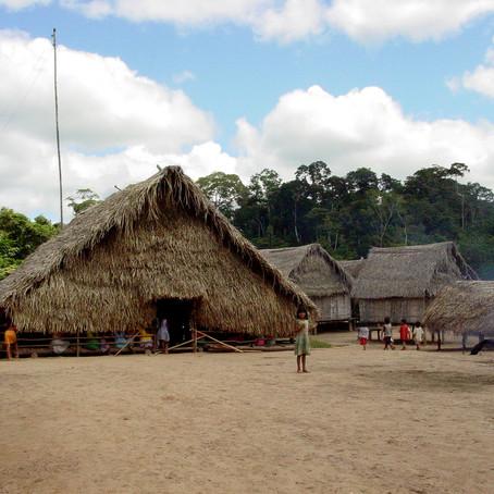 Pesquisa da Unicamp gera energia elétrica para indígenas no Xingu