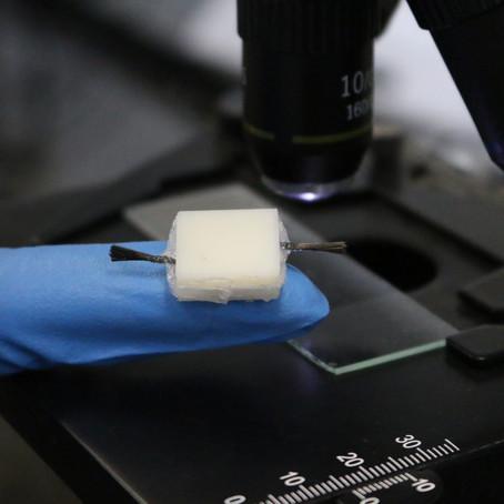 USP e Harvard criam bateria feita de gelatina para uso na área médica