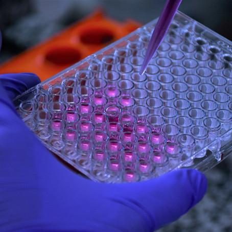Estudo amplia leque de substâncias promissoras contra Chagas