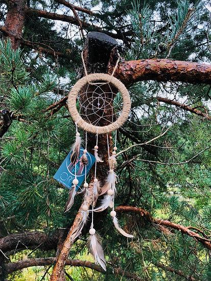 Rêve Or'A - Acacia (17cm)
