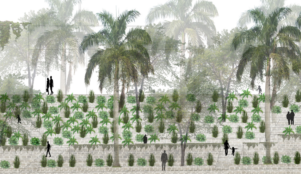 Tropical Palimpsest-Santo Domingo, DR