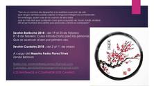 SESSHIN BARILOCHE 19 al 25 de FEBRERO 2018
