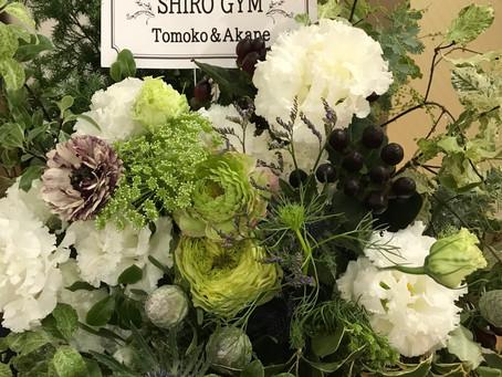 SHIRO GYM 豪徳寺店 リニューアルオープンします!2020年2月に向けて~