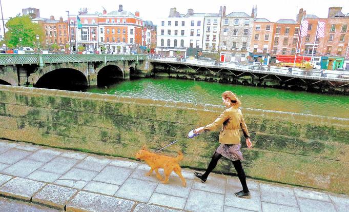 Irish walk 2.jpg