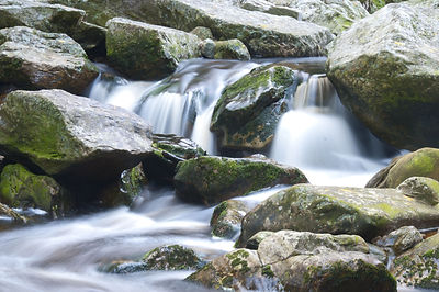 water flowing mossy rocks