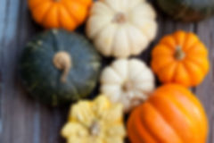 fall seasonal foods pumpkins squashes