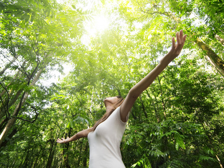 Why Nature is So Important for Our Health
