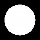 Next_Gen_Academy_Block_logo_clear.png