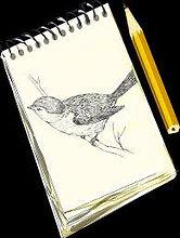 sketch pad.jpg