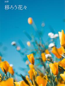四季  移ろう花々