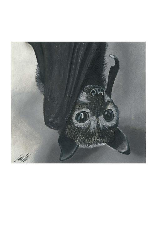 """""""Nocturnal"""" art print"""
