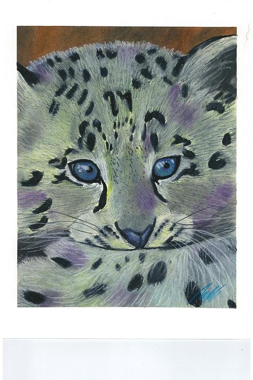 """Baby Snow leopard"" art print"