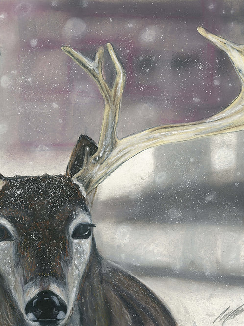 """Winter Stag"" art print"