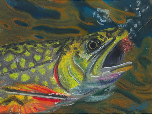 """Brook trout"" art print"