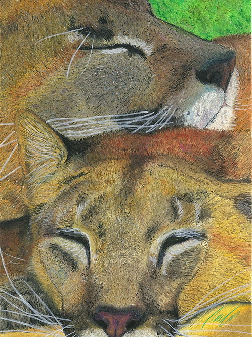 """""""Rest and repose"""" art print"""