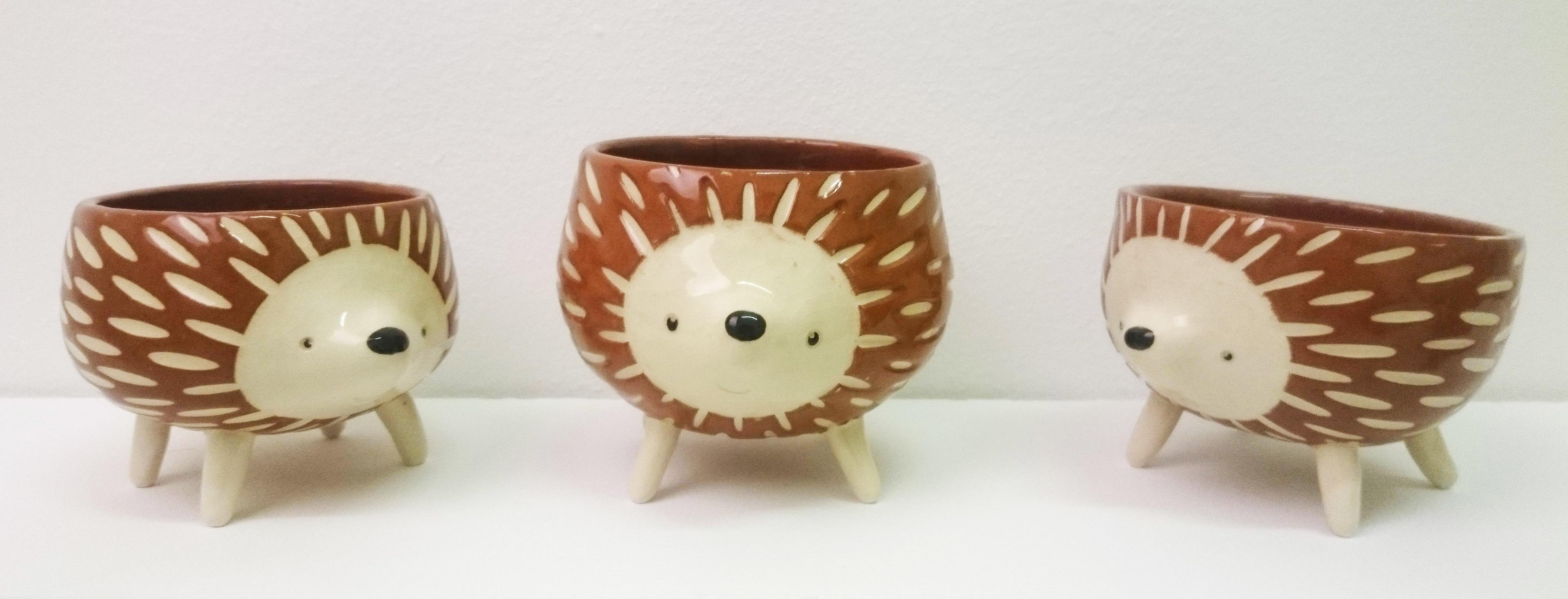 Hedgehog Bowls