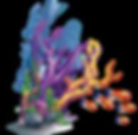 kisspng-coral-marine-biology-sea-small-f