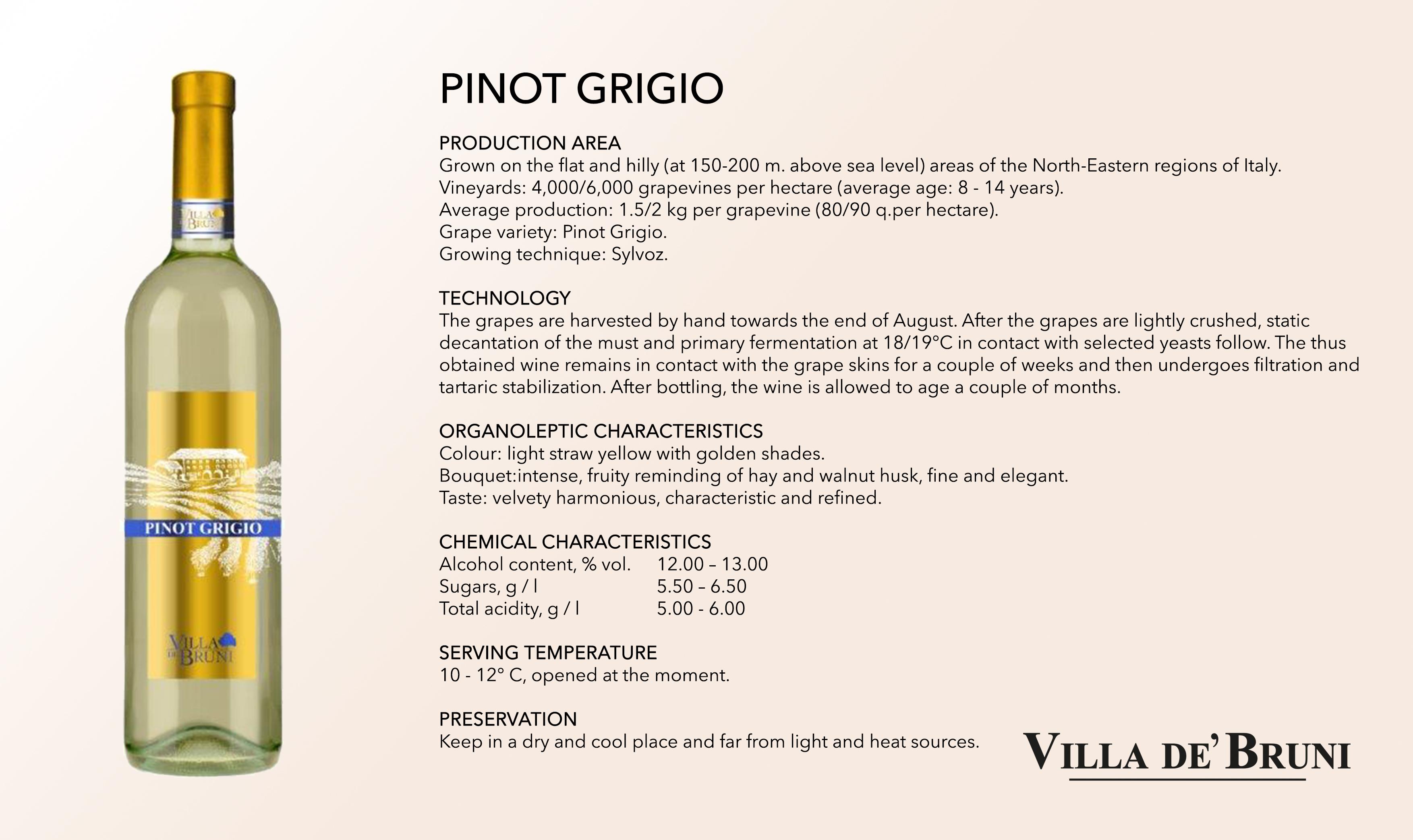 Villa De' Bruni - PINOT GRIGIO