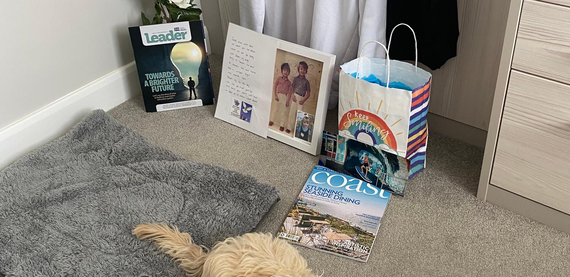 bailey-boo-bear-blue-ocean-packaging.jpg