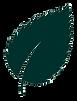 dark-green-leaf.png