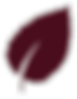 wine-leaf.png